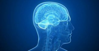 Global Aphasia: symptoms, causes and treatment