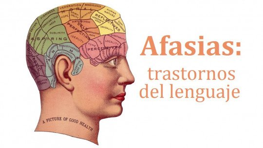 Aphasias: the main language disorders