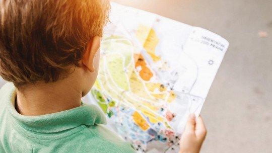 Discovery learning: what it is and how it develops