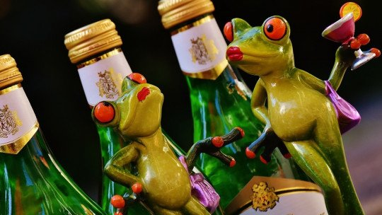 Drinking alcohol during adolescence changes the brain