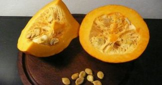 The 11 benefits of the pumpkin for your health