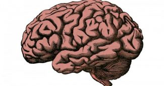 Brain Cysures: What They Are, Characteristics, and Types