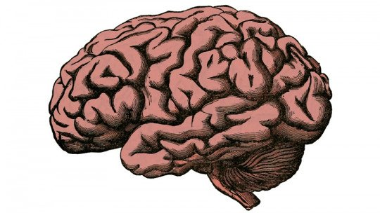 Brain Cysures: What They Are