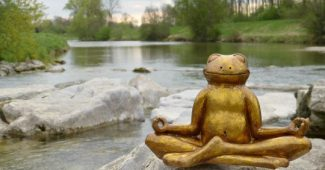 The 3 best Mindfulness courses in Oviedo