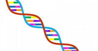Genetic determinism: what it is and what it implies in science
