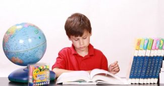 Children's difficulties in learning mathematics