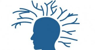 6 activities to enhance executive functions