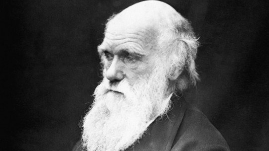 The 70 best phrases and reflections of Charles Darwin