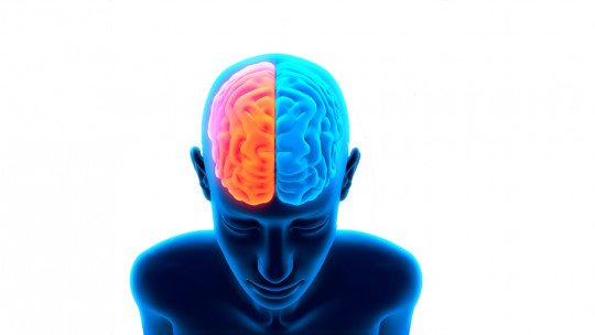 GABA (neurotransmitter): what it is and what role it plays in the brain