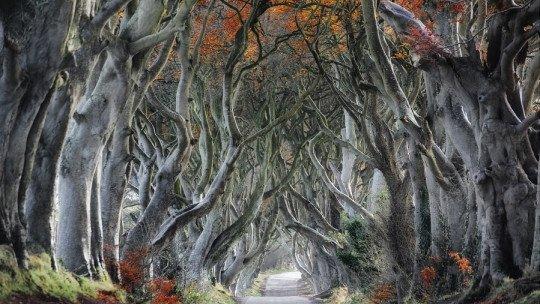 10 Irish legends full of mythology and folklore