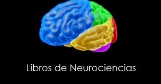13 Neuroscience books for beginners (highly recommended)