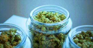 3 scientifically proven benefits of marijuana