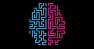 Do neurons regenerate?