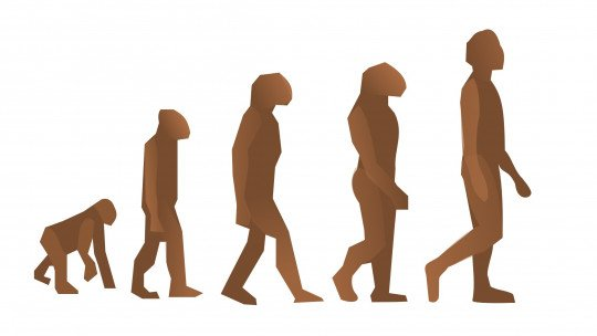 Differences between evolutionary psychology and evolutionary psychology
