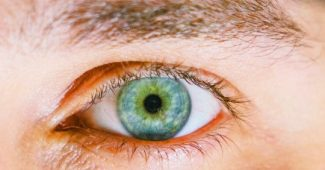 People with large pupils tend to be more intelligent