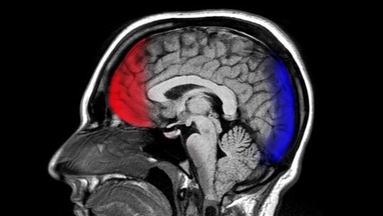 How social networks change our brains