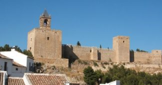 Treatment of anxiety in Antequera: the 8 best psychologists